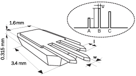 schema of 3 tipless cantilevers on chip CSC series