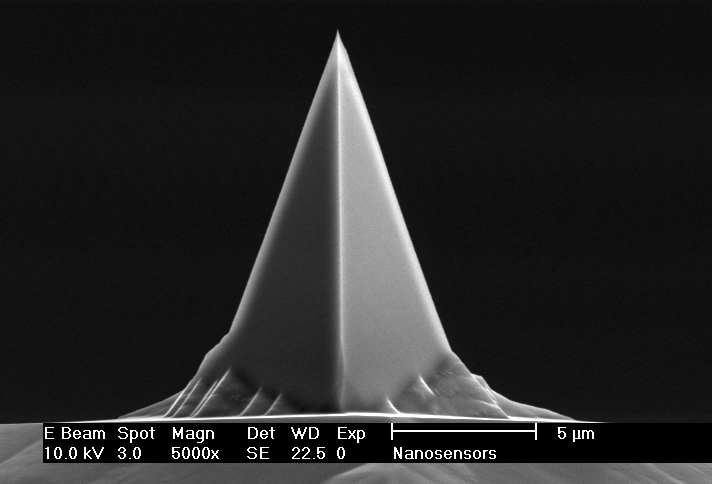 Front view SEM image of PointProbe AFM tip