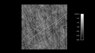 Carbon nanotubes and bundles on quartz atomic steps