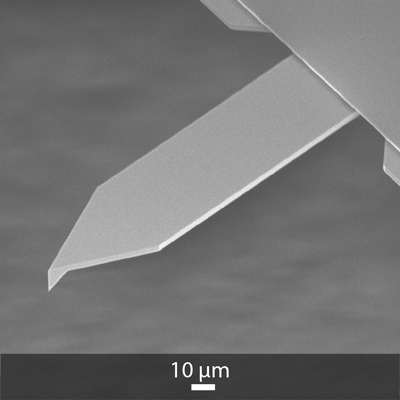 SEM image of OPUS 160AC AFM probe