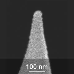 SEM image of cobalt magnetic AFM probe tip close-up