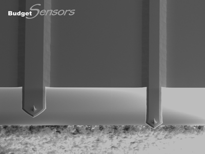 Close-up SEM image of All-In-One (AIO) AFM cantilevers C&D