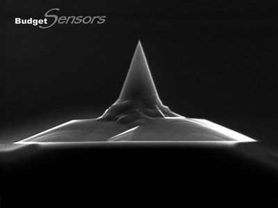 Front view SEM image of uncoated AFM tip
