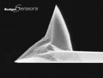 Side view SEM image of platinum (Pt) coated AFM tip