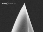 Side view SEM image of gold Au coated AFM tip